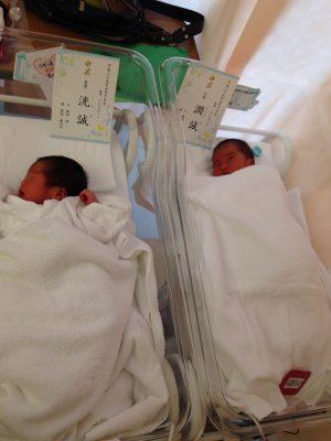 5月に双子が産まれました